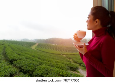Relax style. Asian woman with red sweater fresh morning drinking hot coffee and looking out the window for see Tea farm on sunny day, relax and freedom day.  Lifestyle Concept.
