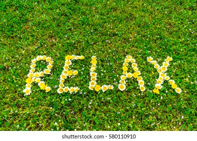 Relax text word written with flowers in green grass background, relaxation concept for spa or health.