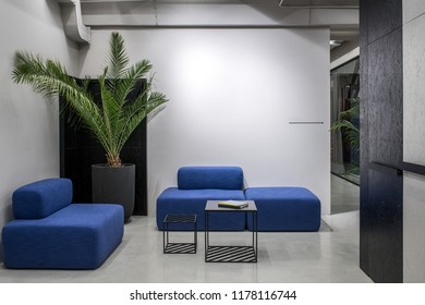 Relax zone in a luminous office with gray and textured black walls and a glossy floor. There are blue sofas, small stands with books, green plant in a big pot, glass partitions with curtain.