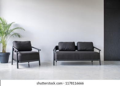 Relax zone in an office with gray and textured black walls and a glossy floor. There is a dark sofa and an armchair, green plant in a big pot. Horizontal.