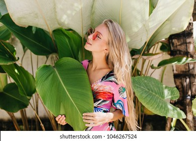 Relaxed long-haired woman in sunglasses posing beside exotic plants. Photo of dreamy european girl with tanned skin having fun in summer vacation.