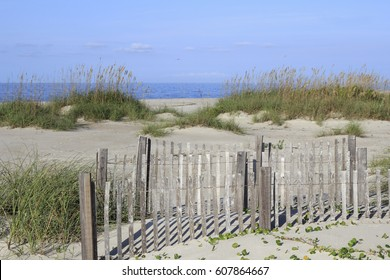Relaxing daylight beach scene of the Atlantic Ocean coast. A small wooden fence and tall grass patch in sand dunes on a sunny day at this tranquil beach.