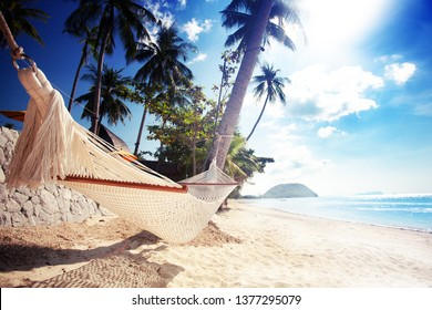 Relaxing in the hammock on the sandy beach