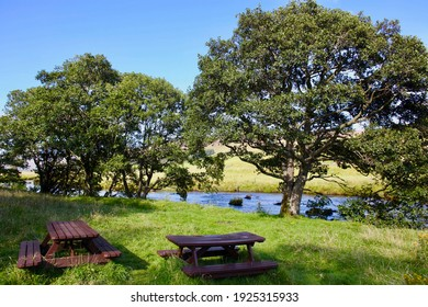 Relaxing picnic spot by the water
