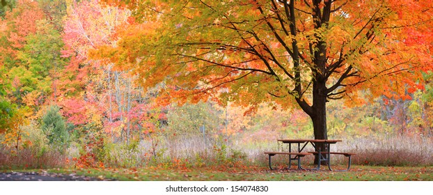 Relaxing picnic table in the park in autumn time