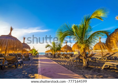 Relaxing resort area on the beach of Torviscas, in summer holiday, Tenerife