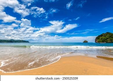 Relaxing tropical Caribbean golden sand island beach with palm trees. Playa Medina, Venezuela
