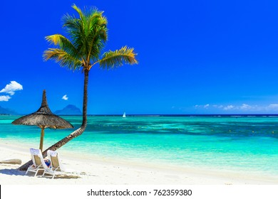 Relaxing tropical holidays with beach chairs under palm trees. Mauritius island