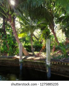 Relaxing Tropical Oasis: Chairs on Dock with Palm Trees