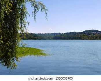 relaxing view of the Varese Lake in Italy with a weeping willow