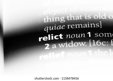 relict word in a dictionary. relict concept.