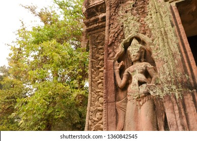 Relief of devata at Ta Prohm. Ta Prohm is the temple at Angkor, Siem Reap, Cambodia. The photogenic place because trees are growing out of the ruins.