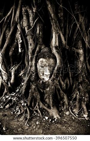 Religion Art Aesthetic Tree Blackwhite Buddha Stock Photo Edit Now