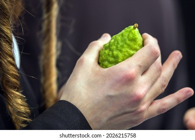 Religious Jew with sidelocks chooses etrog for the holiday Sukkot. Jewish autumn holiday Sukkot - Feast of Tabernacles. The concept of religious, ethnographic and photo tourism - Shutterstock ID 2026215758