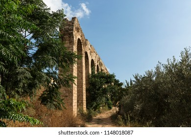 The remains of an aqueduct among olive trees