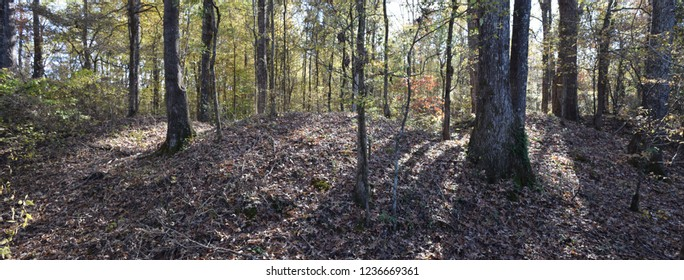 Remains of the Civil War Earthworks at Tallahatchie Crossing in Mississippi