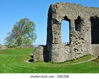 Remains of Kendal castle and tree