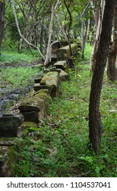 The remains of a wall of an ancient wat, or temple, are in a forest in Cambodia. The scenery is lush and green. The stones are covered in moss, but their original shape can be seen.