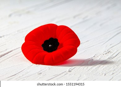 Remembrance Day Poppy Flower with a shadow