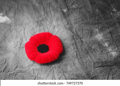 Royalty Free Veterans Day Poppy Stock Images Photos Vectors