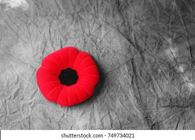remembrance day,veterans day
