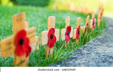 Remembrance Poppies on wooden crosses
