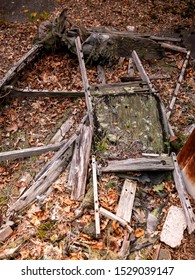 Remnants of a broken and rotted couch frame in the woods