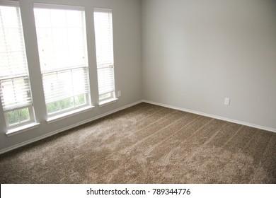 Remodeled bedroom new carpet