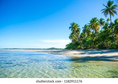 Remote Brazilian beach with shadows of palm trees falling on the shore in Bahia, Brazil