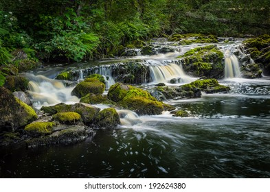 remote forest river with rapids