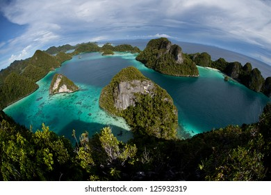 The remote limestone islands of Wayag in Raja Ampat, Indonesia support shallow coral reefs that serve as a nursery for a wide variety of reef fish.  This is a biologically diverse region.