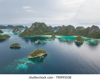 Remote limestone islands in Wayag, Raja Ampat are surrounded by healthy, shallow coral reefs. This beautiful, tropical region is known for its extraordinary marine biodiversity.