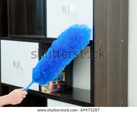 furniture duster. Remove Dust From Your Furniture By Duster Feather L