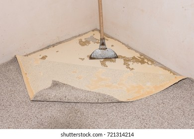 Removing a carpet for renovation works in a living room