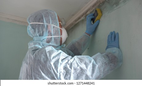 Removing Mold and Mildew. A Man Cleaning Mold From Wall Using Spray Bottle And Sponge