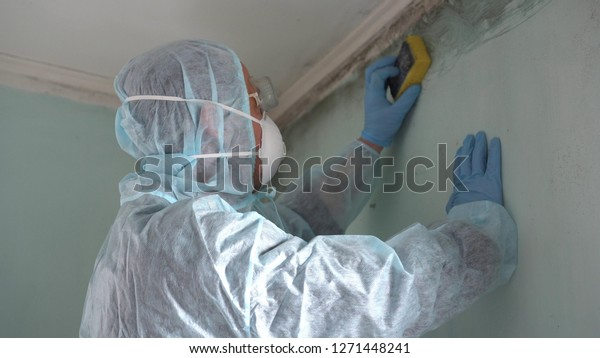 Mold Removal in Kearny