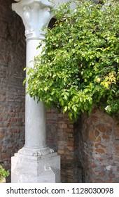 Renaissance corner with column and tree on a red brick background