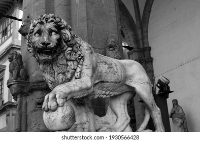 Renaissance sculptures in the Italian city of Florence. Medici lion, marble sculpture of lion, Loggia dei Lanzi, Florence, Italy. Black and white photography.