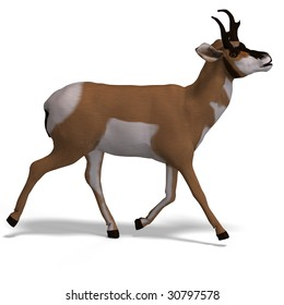 rendering of an antelope with Clipping Path and shadow over white