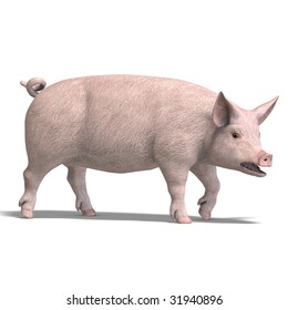 rendering of a pig with shadow and clipping path over white