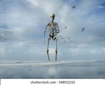 Giant Skeleton Images, Stock Photos & Vectors   Shutterstock