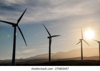 Renewable Energy Concept Windmil Farm at Sunset