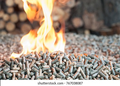 Renewable energy - oak and sunflower wooden pellets in flames
