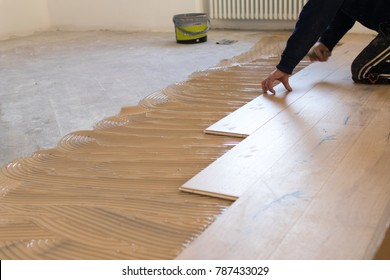 Renovation of an apartment, skilled worker during the installation of pre-finished interlocking parquet. Laying with brown glue on an existing floor. Installation of oak colored parquet