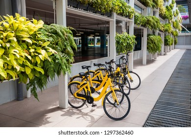 Rent a bike with yellow bikes in Singapore