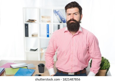 Rent office. Office worker formal suit. Managing project. Doing business. Business consulting services. Developing business. Making career. Boss office. Man launched startup project. Ceo concept.