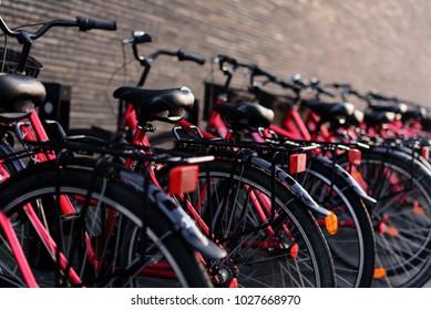 rental bicycles in Copenhagen, line of bikes for rent