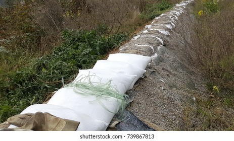 Repairing old sandbags flood protection surrounded with overgrown grass and vegetation with new white sandbags