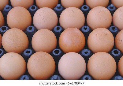 Repetition eggs