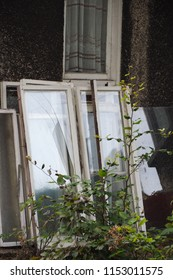 Replace those old windows